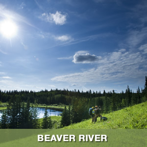 Meadow Lake Beaver River